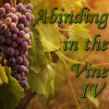 Abiding in the vine IV thumb