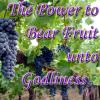 Bearing Fruit5