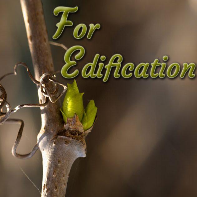 Topic: For Edification @ Sunday Church | Palmetto | Florida | United States