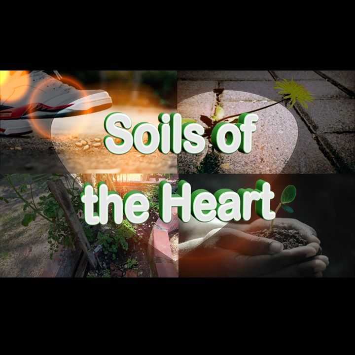 Soils - heart