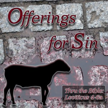 Sin Offering