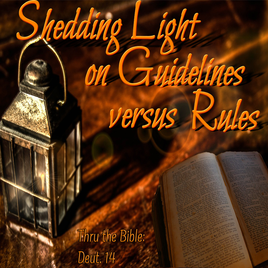 Guidelines & rules