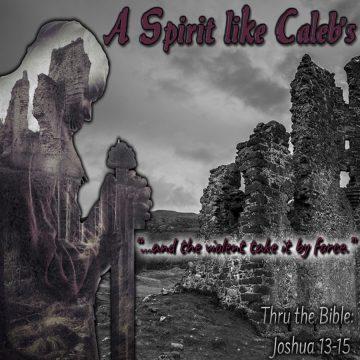 Spirit Caleb's
