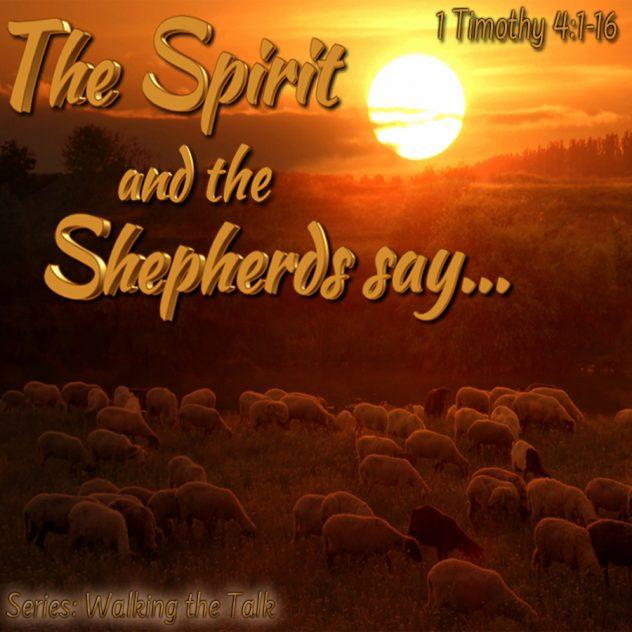 Spirit Shepherds