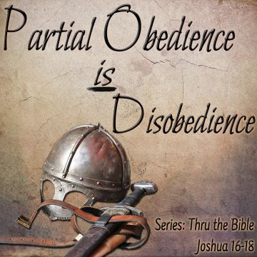 Partial Obedience