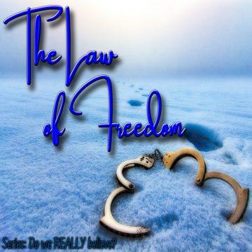 Law Freedom
