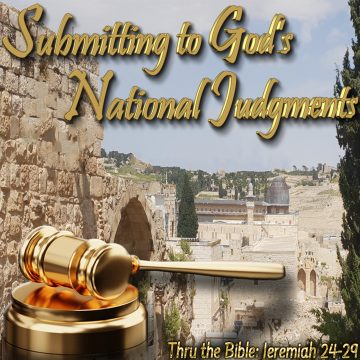 nation national judgment